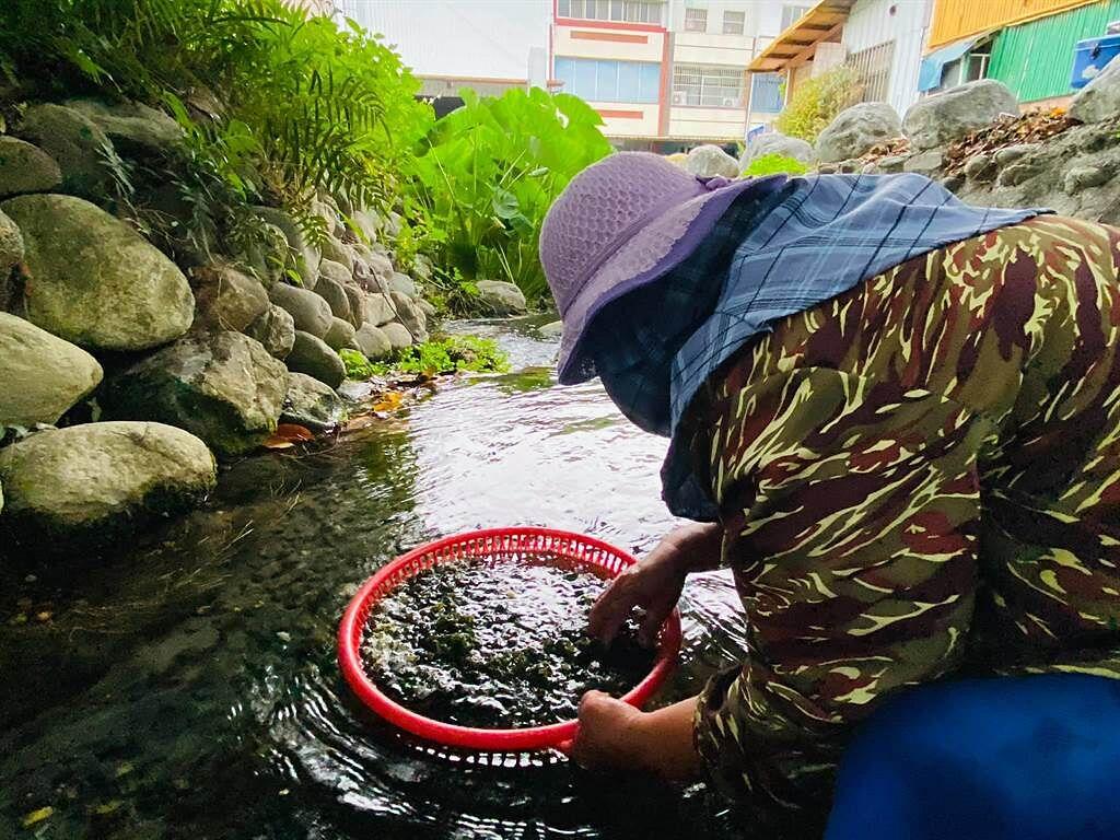 关山水井仔地下水丰沛 水源终年不断